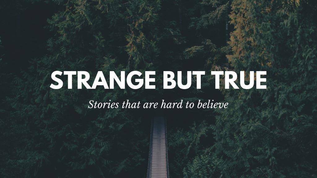 Strange but True – Stories that are hard tobelieve